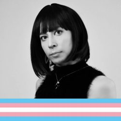 El discurso transfóbico, el verdadero caballo de Troya del feminismo